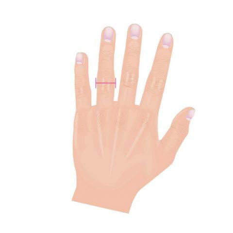 指輪のサイズの測り方